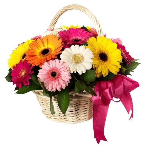 B40 Mix Gerbera Basket