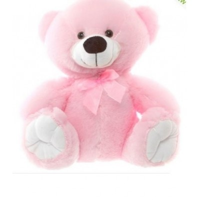 T06 Teddy Bear Pink