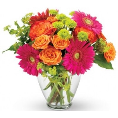 B22  Mix bright color flowers