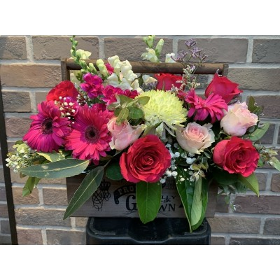 M120 Nice | Florist Bella Vista | Stylish Blooms